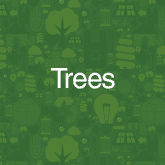 Tree initiatives
